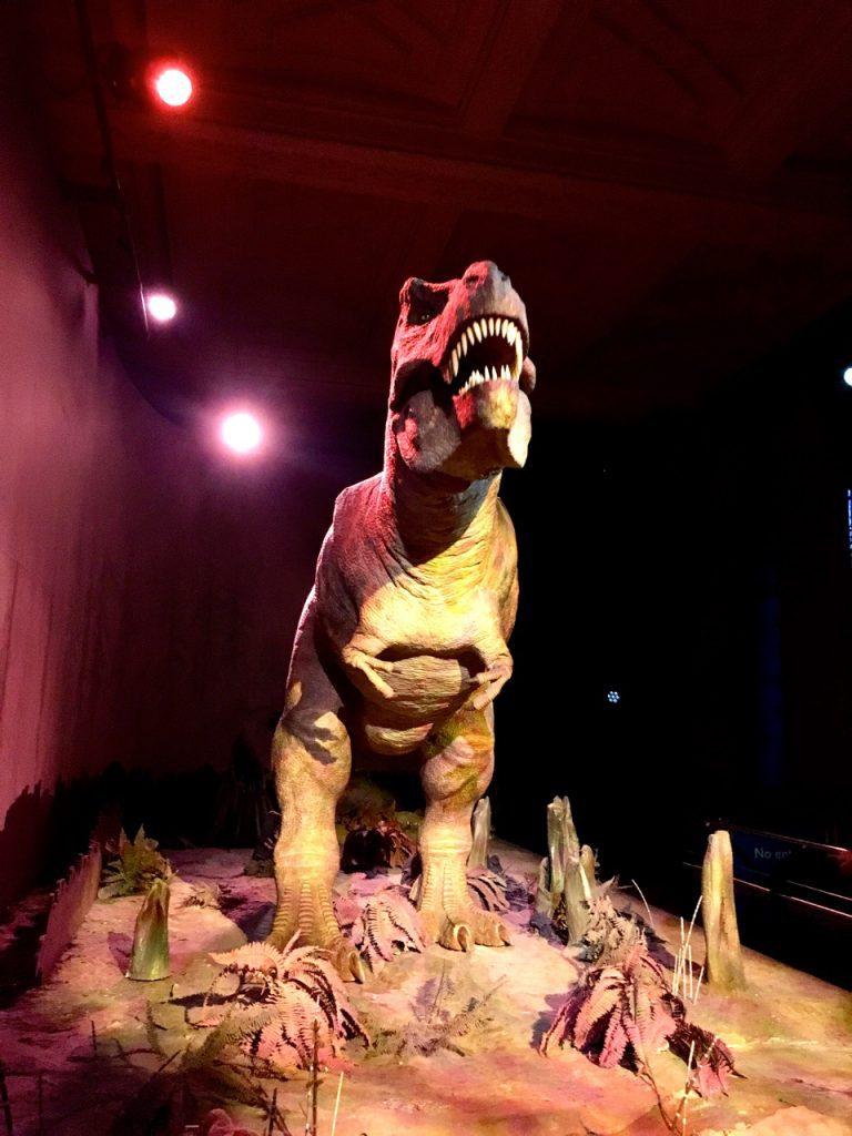 Tirannosauro al Museo di Storia Naturale