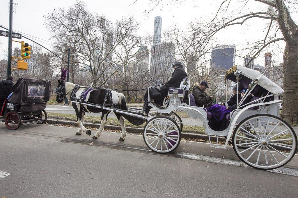 carrozza a Central Park