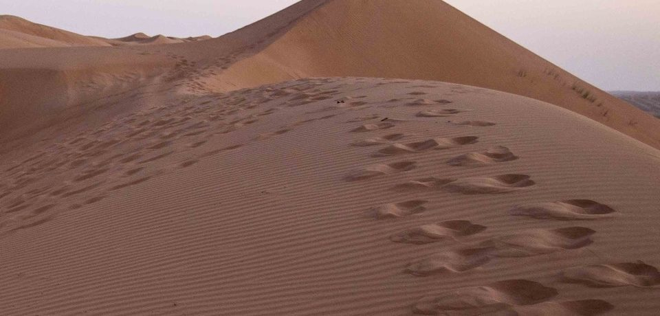 deserto Wahiba Sands -Oman